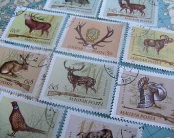 Deer Rabbit Partridge Pheasant - Hungary hunting animals stamp set - Hungarian stamps - postage stamp ephemera