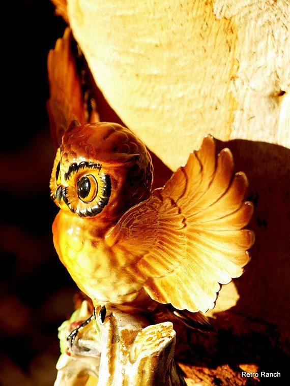 vintage owl  - fly away home