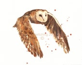 Watercolor OWL Art Print, 5x7 print, cabin, owl painting, ready to frame