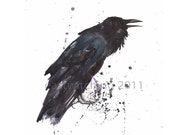 RAVEN watercolor print, raven lover gift, 8x10 print, ready to frame, watercolor birds