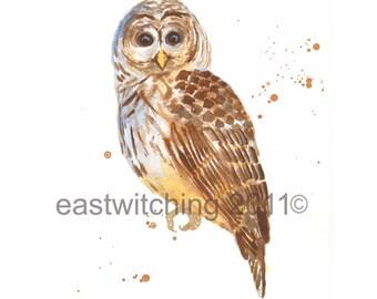 Cute Baby OWL Print, owl decor, owl, owl painting, nursery animal prints