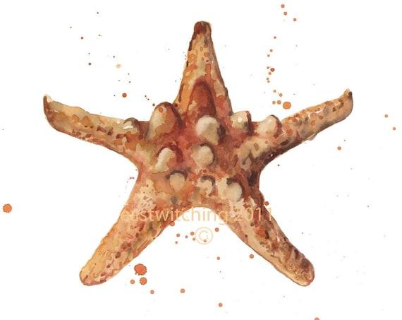 BEACH Decor,  STARFISH Print, starfish, beach house art print