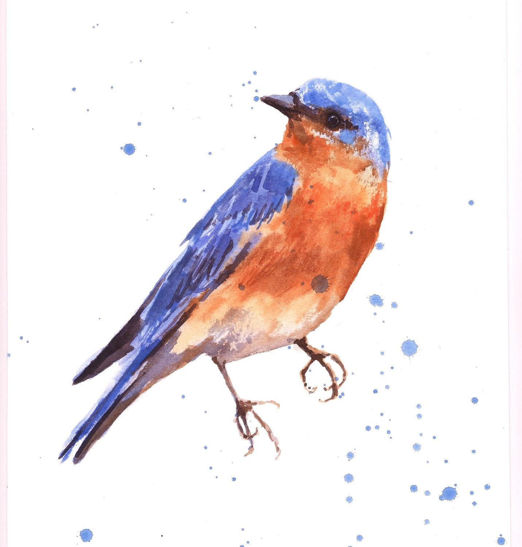 bluebird print bird art bluebird painting blue orange. Black Bedroom Furniture Sets. Home Design Ideas