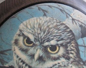 Vintage 1970s  Frosted Domed Oval Owl Winter Wall Hanging Decor