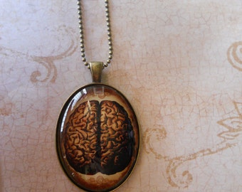 Oddity necklace human brain