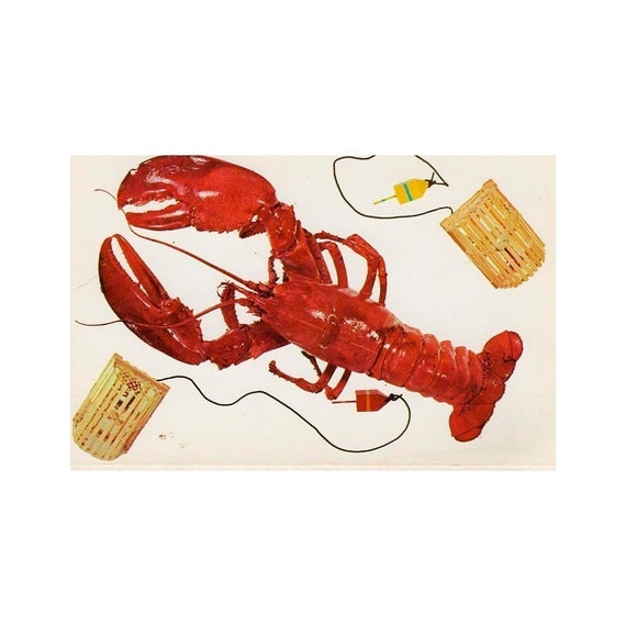 MAINE red LOBSTER vintage POSTCARD funky  fun 1960s  unused