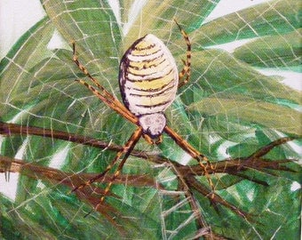 Orb Weaver Spider, original acrylic painting