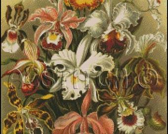 ORCHIDS cross stitch pattern No.460