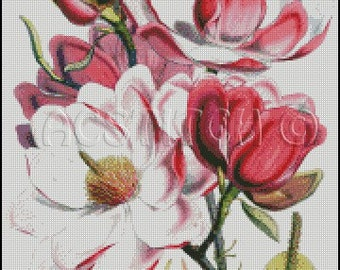 MAGNOLIA CAMPBELLII cross stitch pattern No.317