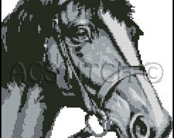 HORSE  cross stitch pattern No.171