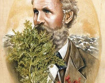 Portrait of John Muir Print