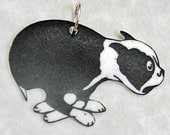 THAT CRAZY DOG Small Pendant Necklace