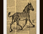 Art Print ZEBRA 8x10 Dictionary Gold Gilded Vintage Page