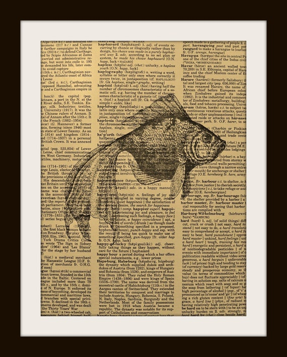 FAN TAIL GOLDFISH Print on Vintage Dictionary Page FREE SHIPPING WORLDWIDE