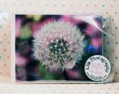 Pink Puffball Blank Greeting Card And Envelope