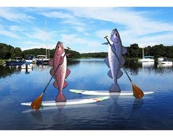 The Paddleboard Cod