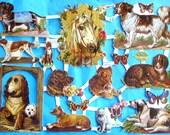 New German Victorian Paper Scrap Dogs Dachshund