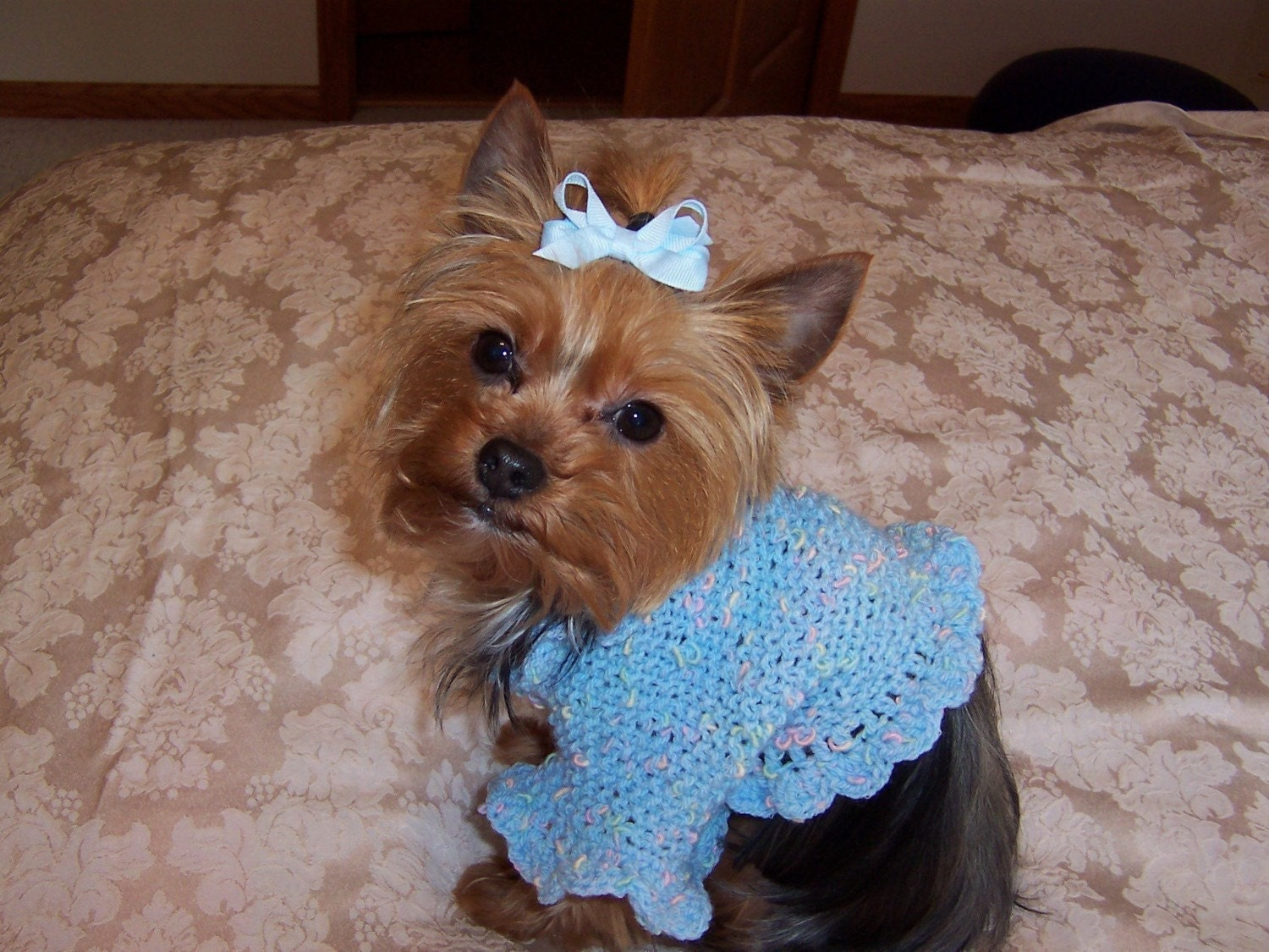 Crochet Pattern For Yorkie Sweater : LITTLE MISSY Dog Shrug Sweater Knit/Crochet Pattern