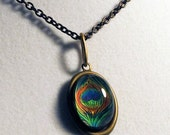 The Peacock Feather -- Brass Pendant with Original Artwork