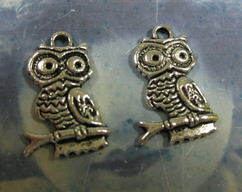 Clearance Antique Silver Finish  Owl on a Perch  Charms 854SIL x4
