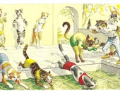 Vintage 1970s Alfred Mainzer Dressed Cats Postcard-The Swimming Competition