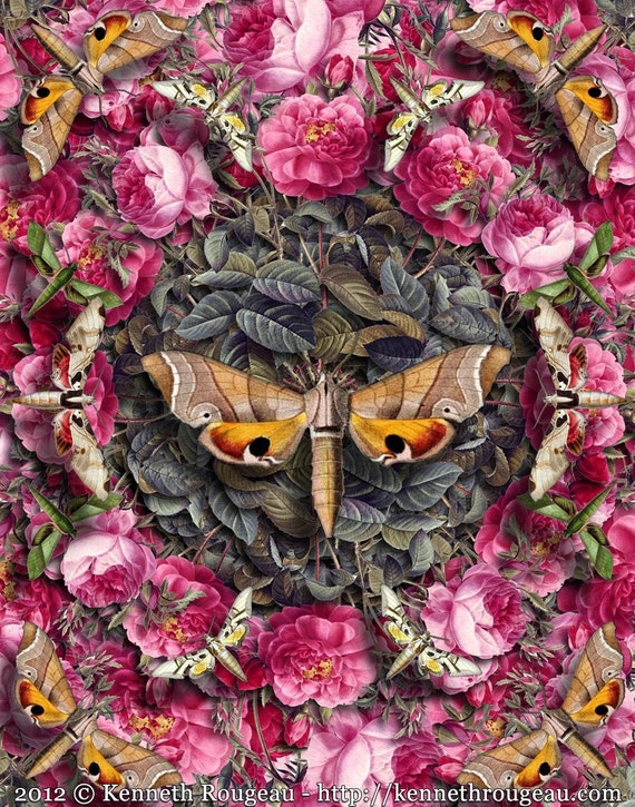 Forms Of Nature No. 17: Flowers and Flutterbyes - Surreal Nature Collage Art