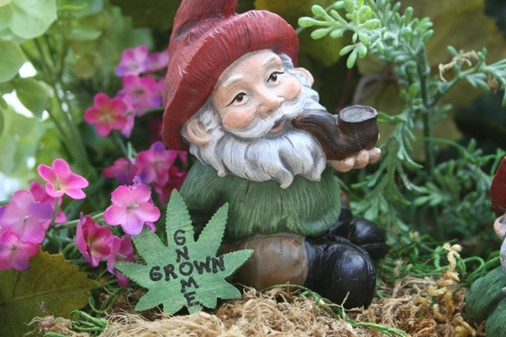 Gnome In Garden: Garden Gnome Pipe Smoking Yard Gnome With Gnome By