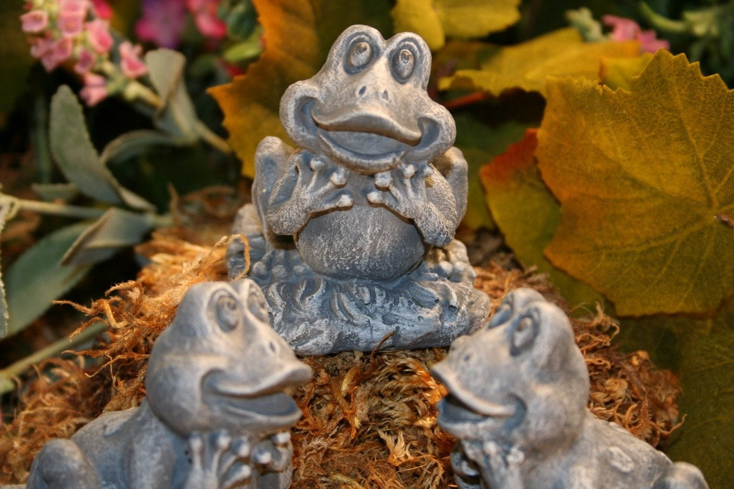 Frog Pot Feet For Planters Set Of 3 Garden Pot By