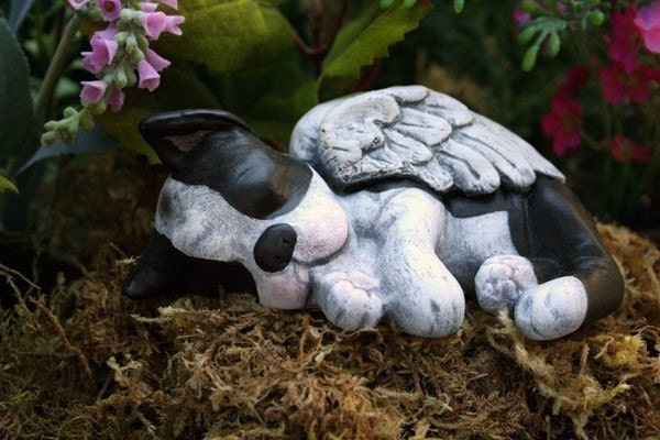 Boston Terrier Angel Statue Dog Angel Concrete Memorial