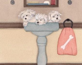 Maltese fill a sink at bath time / Lynch signed folk art print