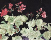 Arlene's Geraniums reduced price with free shipping