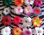SALE, Plumeria,flowers, plumeria clip, hair barrette, plumeria clip,VLV,hawaiian flower, flower clip
