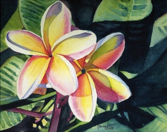 plumeria art,  tropical flowers, 8x10 prints, hawaiian art, kauai paintings, hawaii print, frangipani, giclee artwork, hawaiiana, kauaiart