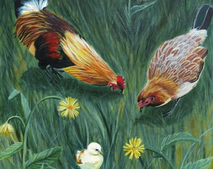 Chicken art print,  8x10 giclee print, rooster art, chicken art, chicken art prints,  baby chick prints,  kauai rooster art, chicken kitchen