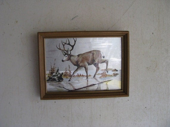 Framed metallic STAG