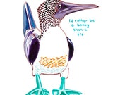 Blue footed booby bird greetings card