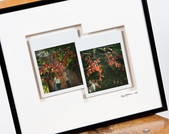 Drops of Red - Framed Polaroid Diptych - Original prints 1/1