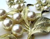 Vintage Brooch and Earrings Emmons Jewelry