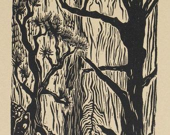 Original woodcut Southwest landscape Zion National Park hidden canyon
