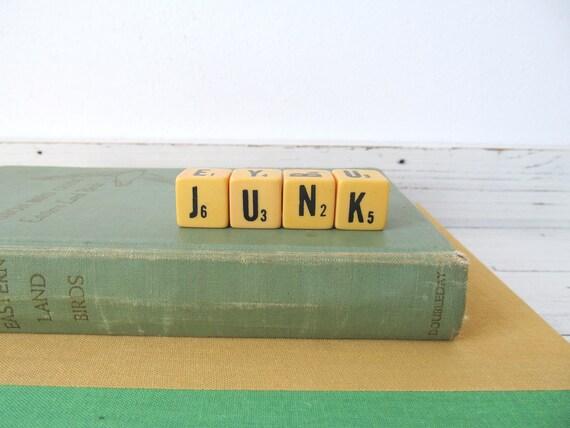 Vintage Letter Dice- Junk