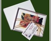 Blank Fine Art Note Cards Assortment 1