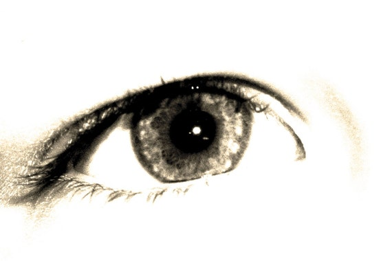 Eye Art Photograph Sight Close Up Macro Wall Art Room Decor - Sepia Eye a Fine Art Photograph