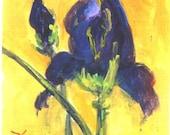 PURPLE IRIS signed print floral print