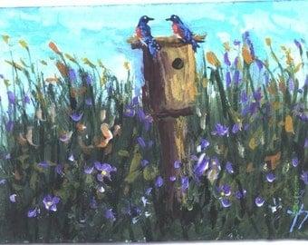 ACEO BLUEBIRDS IN WILDFLOWERS print Jim Smeltz