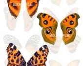 Orange Butterfly Wings Digital Collage Sheet
