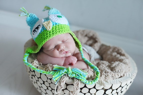 Baby Boy Owl Hat, Winking Owl Hat, Baby Boy Hats, Hats for Baby Boys, Newborn Owl Hat, Baby Animal Hat, Crochet Owl Hat, Blue, Green