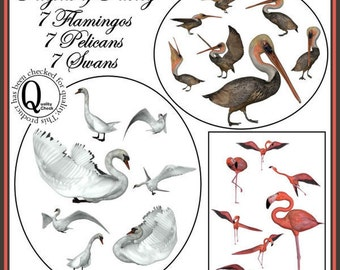 Flights of Fancy Graphics Clipart Set -- 21 Royalty Free Images