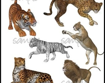Fierce Felines Graphics Clipart Collection - 70 Royalty-Free Images