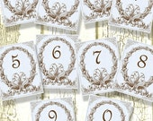 Set of 10, 4x5 Vintage and Shabby Digital Wedding Robin Egg Blue Table Numbers