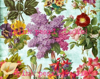 Spring Floral, Flowers Digital Collage Clipart Sheet
